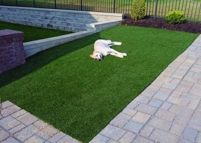 K9Grass artificial turf for dogs